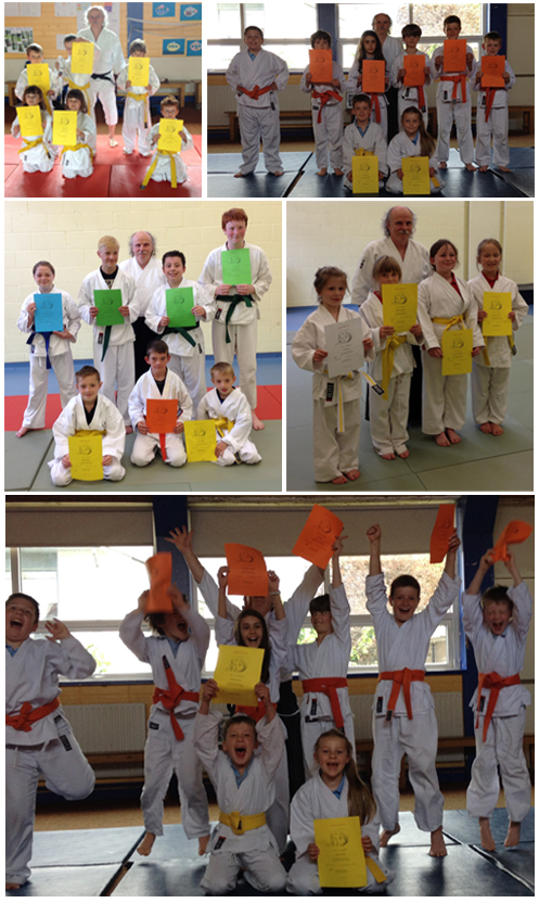 Ikeda Dojo Wicklow Kids Success
