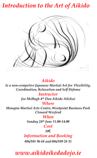 Wexford Introduction to Aikido